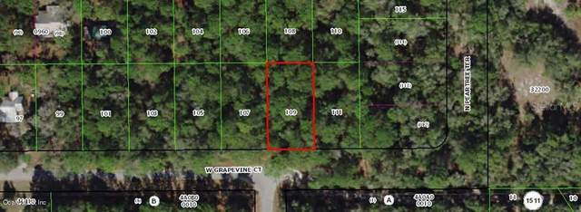 2809 W Grapevine Court, Dunnellon, FL 34433 (MLS #OM561187) :: The Light Team