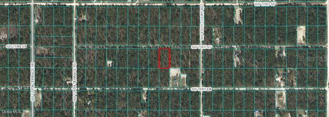 Lot 9 W1/2 SW 75th Street, Dunnellon, FL 34432 (MLS #OM561233) :: The Light Team