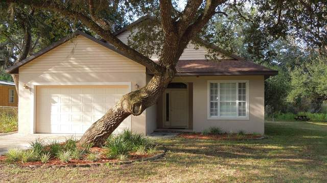 24907 NE 135th Street, Salt Springs, FL 32134 (MLS #OM562606) :: Rabell Realty Group