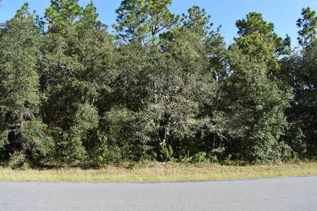 3922 N Longvalley Road, Hernando, FL 34442 (MLS #OM563615) :: Bustamante Real Estate