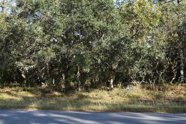 3914 N Longvalley Road, Hernando, FL 34442 (MLS #OM563616) :: Bustamante Real Estate