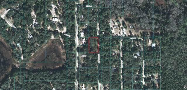 380 NE 171st Avenue, Silver Springs, FL 34488 (MLS #OM564742) :: Better Homes & Gardens Real Estate Thomas Group