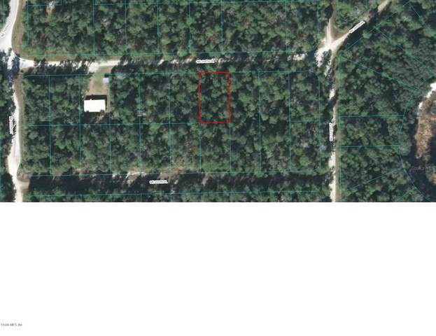 TBD NE 236TH Place, Fort Mccoy, FL 32134 (MLS #OM565709) :: Team Buky