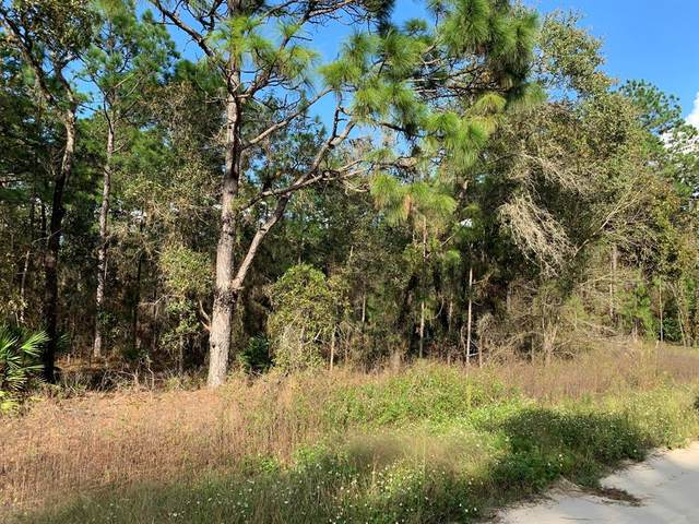 00 SW 80th St Street, Dunnellon, FL 34432 (MLS #OM565765) :: The Light Team