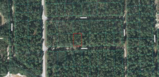 110 NE 237TH Place, Fort Mccoy, FL 32134 (MLS #OM565918) :: Team Buky