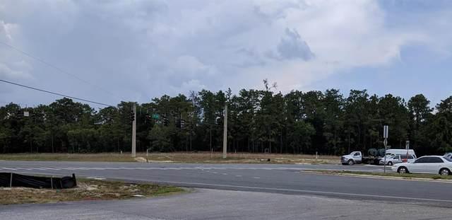 10011 SW 484, Ocala, FL 34481 (MLS #OM565938) :: Bob Paulson with Vylla Home