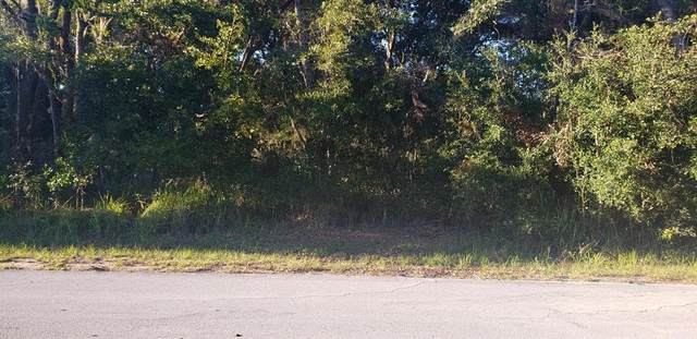 0 Cedar Tree Pass, Ocala, FL 34472 (MLS #OM566074) :: The Light Team