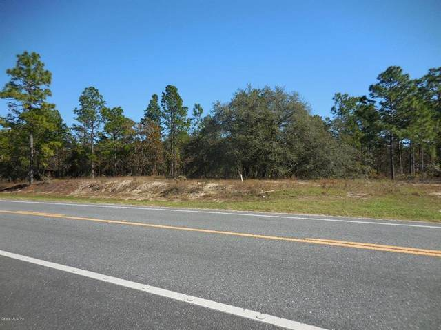 2041 SE State Road 121, Morriston, FL 32668 (MLS #OM566393) :: EXIT King Realty