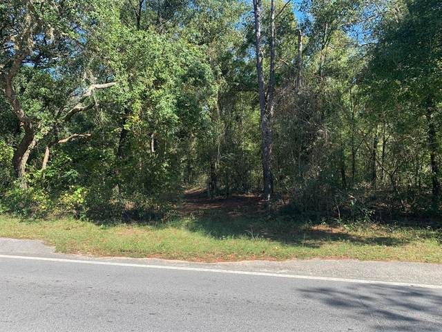 205 Baden Powell Road, Hawthorne, FL 32640 (MLS #OM566830) :: The Duncan Duo Team