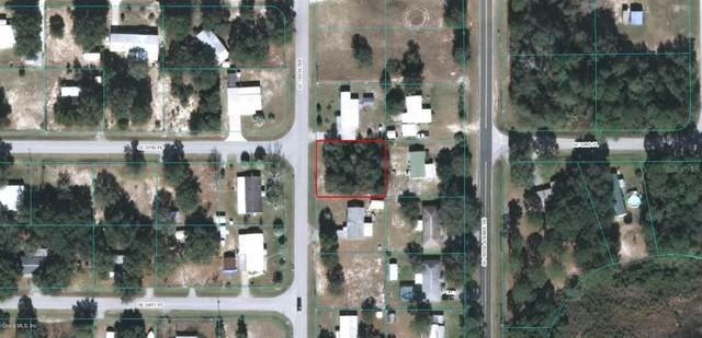 53 SE 184 Terrace, Ocklawaha, FL 32179 (MLS #OM567016) :: The A Team of Charles Rutenberg Realty