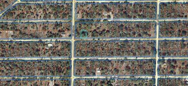 000 NE 67 Lane, Williston, FL 32696 (MLS #OM567063) :: Realty Executives Mid Florida