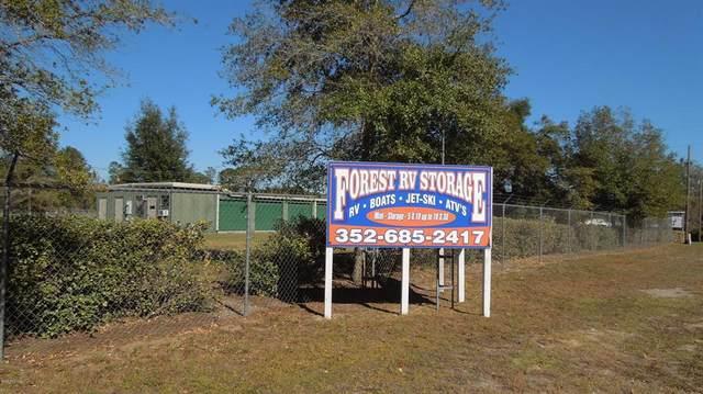12805 NE 247 Court, Salt Springs, FL 32134 (MLS #OM567246) :: Rabell Realty Group