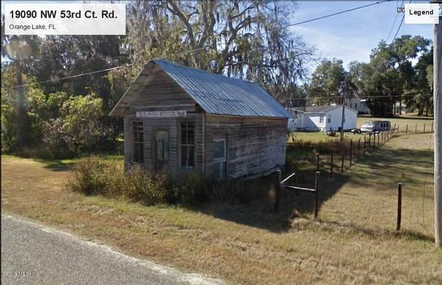 19090 NW 53rd Court Road, Citra, FL 32113 (MLS #OM567711) :: The Light Team