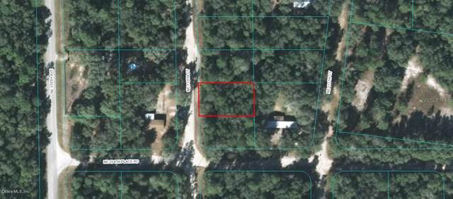 TBD Ne 110Th Ct, Fort Mccoy, FL 32134 (MLS #OM569159) :: Team Buky