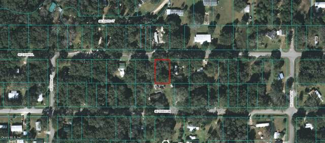 10618 Se 130Th Pl, Ocklawaha, FL 32179 (MLS #OM569217) :: Heckler Realty