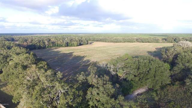 14276 SW 171 Place, Archer, FL 32618 (MLS #OM569281) :: Pristine Properties