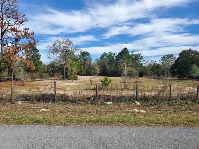 00 SW Carnation Court, Dunnellon, FL 34431 (MLS #OM569535) :: Premium Properties Real Estate Services
