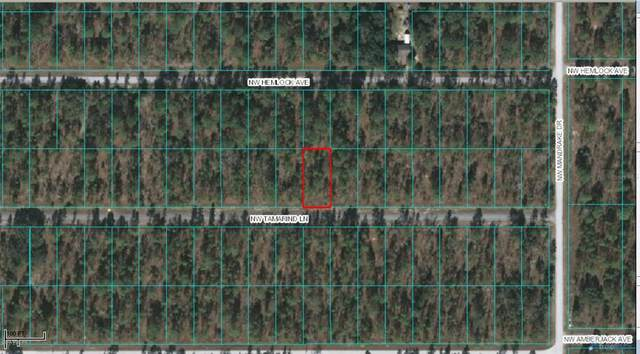 TBD NW Tamarind Lane, Dunnellon, FL 34431 (MLS #OM569716) :: GO Realty