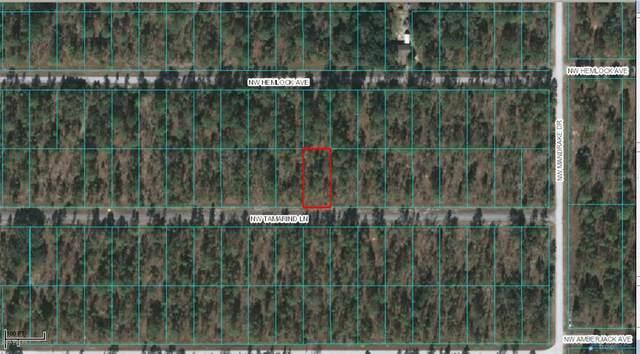 TBD NW Tamarind Lane, Dunnellon, FL 34431 (MLS #OM569716) :: Lockhart & Walseth Team, Realtors