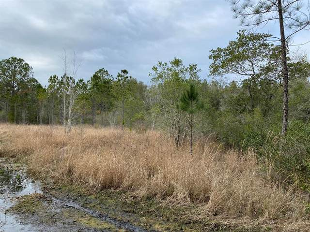 0 SW 156th Place, Dunnellon, FL 34432 (MLS #OM569763) :: The Light Team