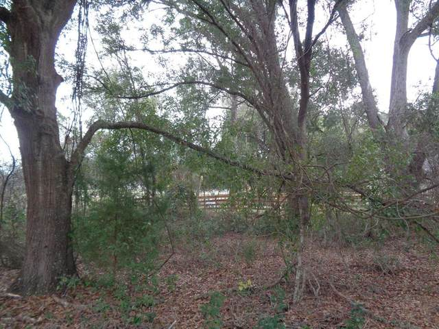 0 SE 157th Lane, Summerfield, FL 34491 (MLS #OM570176) :: Young Real Estate
