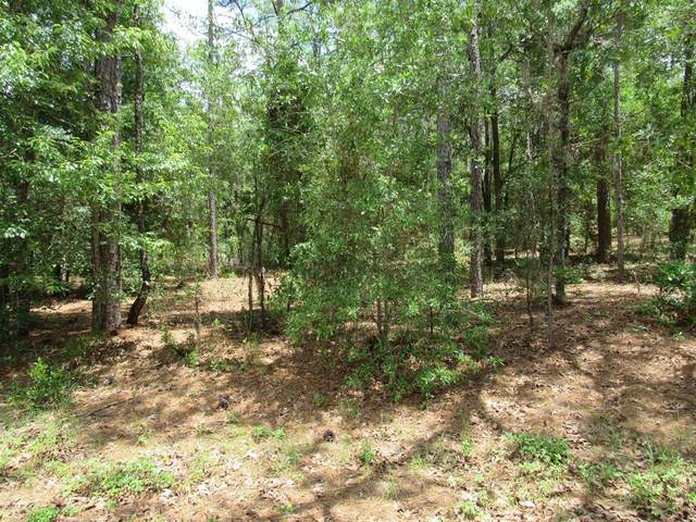 TBD SW 204 Circle, Dunnellon, FL 34431 (MLS #OM570342) :: The A Team of Charles Rutenberg Realty