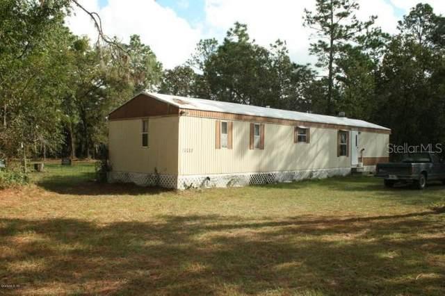 16537 SW 24TH Place, Ocala, FL 34481 (MLS #OM600033) :: The Light Team