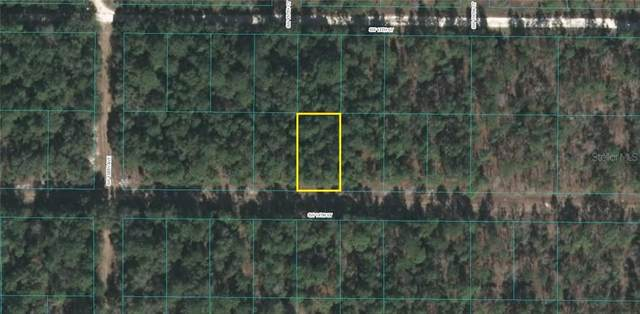 14TH Street SW, Ocala, FL 34481 (MLS #OM600151) :: Rabell Realty Group