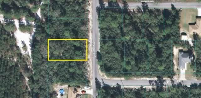 Malauka Pass Course, Ocklawaha, FL 32179 (MLS #OM600155) :: Burwell Real Estate