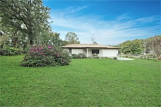 13232 NE 39TH Terrace, Anthony, FL 32617 (MLS #OM600216) :: Your Florida House Team