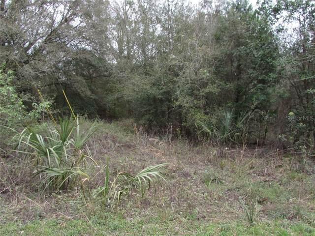 11391 N Lisette Path, Dunnellon, FL 34433 (MLS #OM600223) :: Zarghami Group
