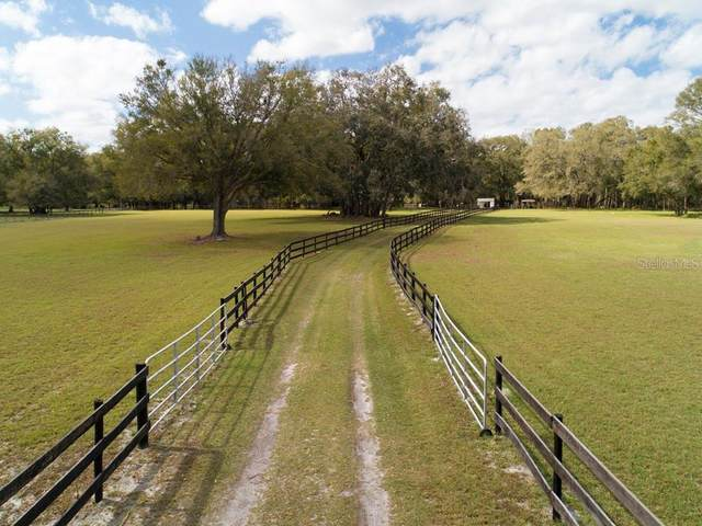 8240 NW 145TH AVENUE Road, Morriston, FL 32668 (MLS #OM600398) :: The Dora Campbell Team