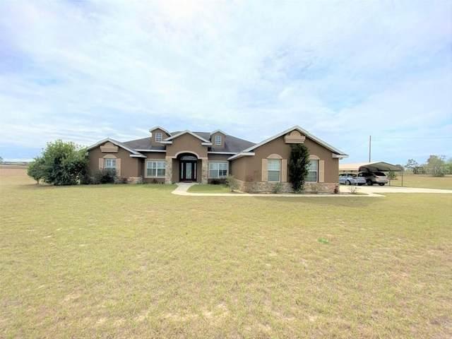 11850 NE 30TH Street, Bronson, FL 32621 (MLS #OM600519) :: Cartwright Realty