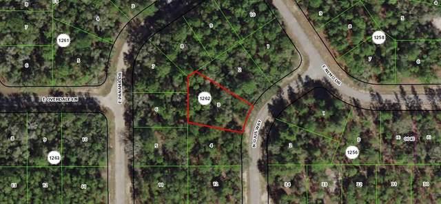 11875 N Elkcam Boulevard, Dunnellon, FL 34433 (MLS #OM600610) :: RE/MAX Realtec Group
