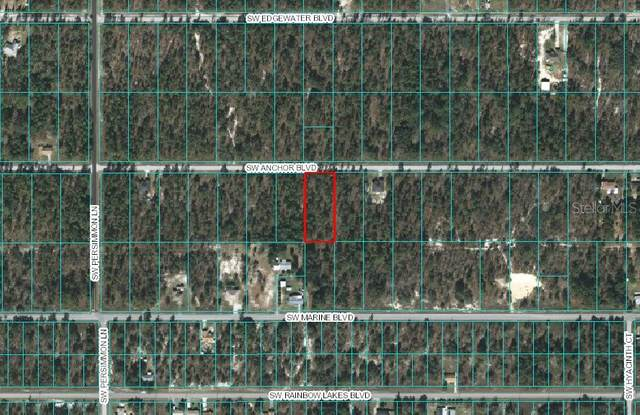 TBD SW Anchor Boulevard, Dunnellon, FL 34431 (MLS #OM600709) :: RE/MAX Realtec Group