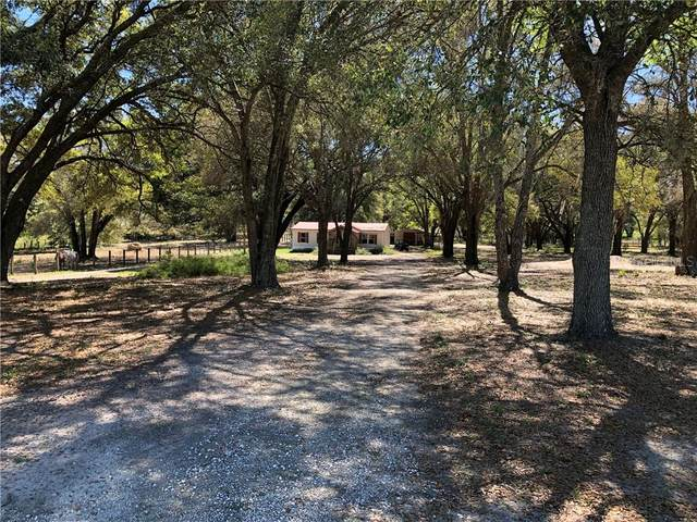 15160 SE 170TH Street, Weirsdale, FL 32195 (MLS #OM600866) :: Godwin Realty Group