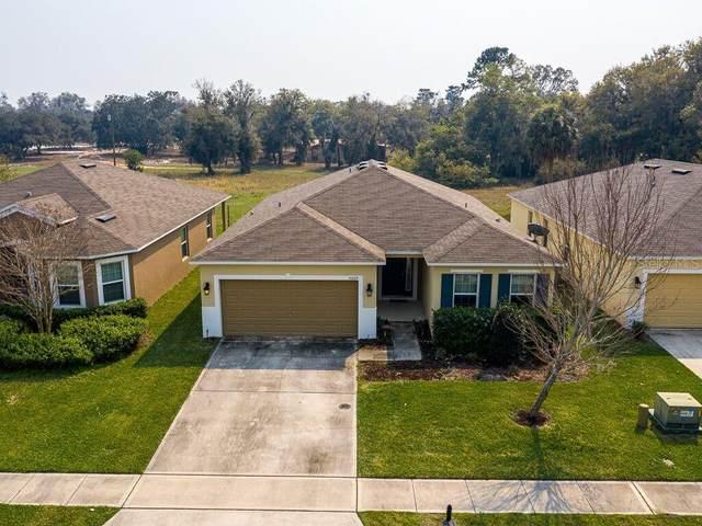 5009 Grassy Knoll Drive, Tavares, FL 32778 (MLS #OM600867) :: Bosshardt Realty