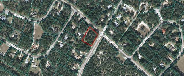 00 SW 102ND STREET Road, Dunnellon, FL 34431 (MLS #OM601045) :: Alpha Equity Team