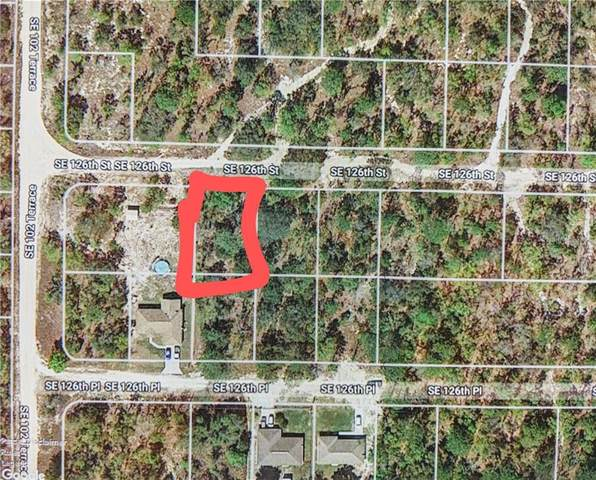0 SE 126 Street, Belleview, FL 34420 (MLS #OM601102) :: The A Team of Charles Rutenberg Realty