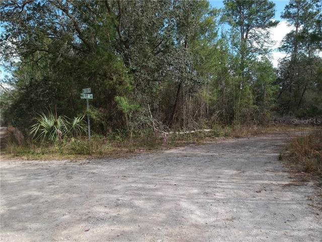 TBD NE 133 Terrace, Fort Mc Coy, FL 32134 (MLS #OM601131) :: Team Buky