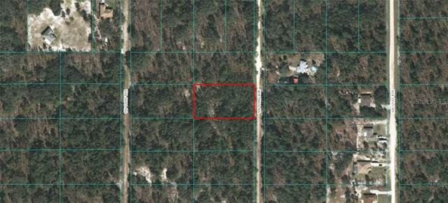 Sw 122Nd Ave, Dunnellon, FL 34432 (MLS #OM601143) :: Zarghami Group