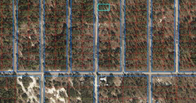 LOT 44 SE 134TH COURT, Dunnellon, FL 34431 (MLS #OM601163) :: Bustamante Real Estate