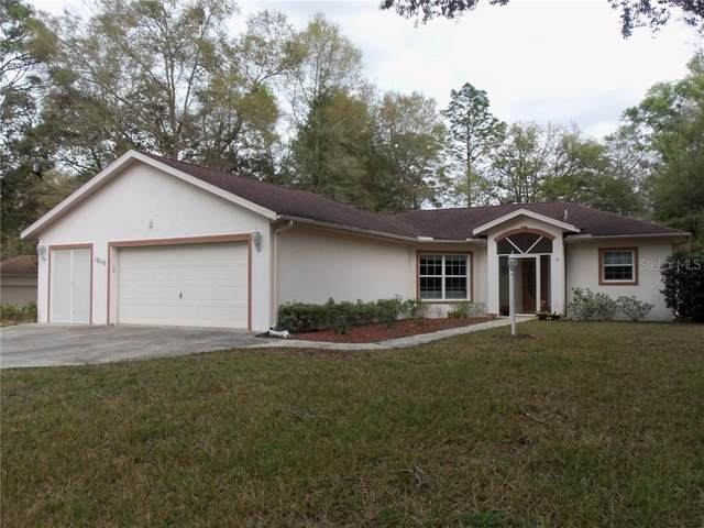 10115 SW 188TH Circle, Dunnellon, FL 34432 (MLS #OM601199) :: The Light Team