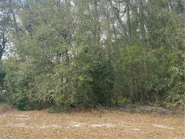 0 SE 41ST Avenue, Ocala, FL 34471 (MLS #OM601248) :: Bustamante Real Estate