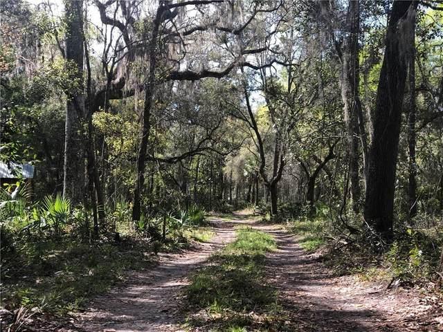 Address Not Published, Citra, FL 32113 (MLS #OM601493) :: Realty Executives Mid Florida