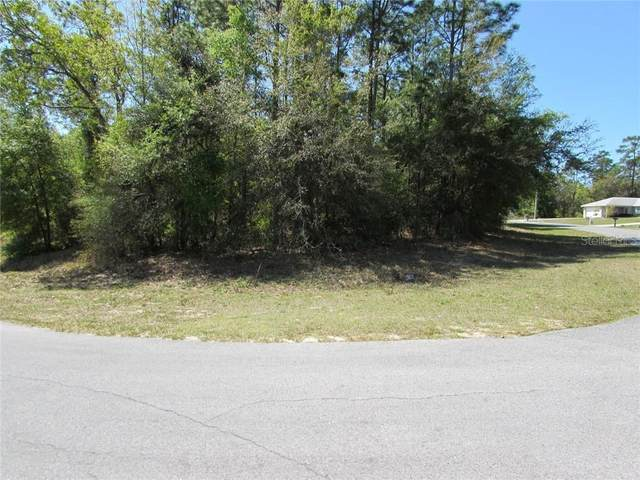 0 SW 196 Avenue, Dunnellon, FL 34432 (MLS #OM601902) :: The Light Team