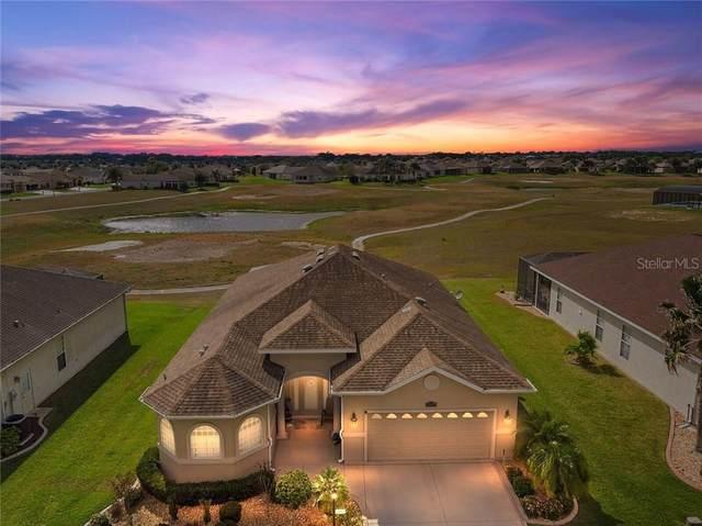 17577 SE 121ST Circle, Summerfield, FL 34491 (MLS #OM601926) :: Homepride Realty Services