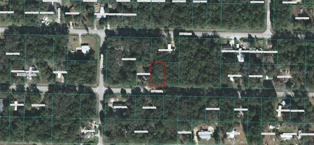 TBD NW 11TH Place, Ocala, FL 34482 (MLS #OM601954) :: Rabell Realty Group