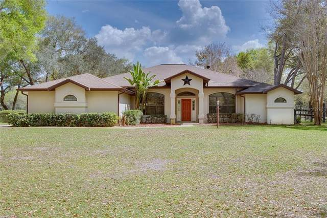 11691 NE 150TH AVENUE Road, Fort Mc Coy, FL 32134 (MLS #OM601991) :: The Figueroa Team