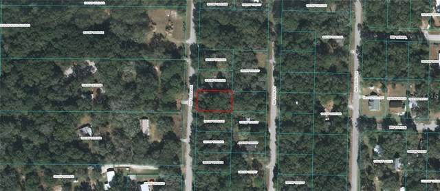 TBD NW 120TH Avenue, Ocala, FL 34482 (MLS #OM601993) :: Lockhart & Walseth Team, Realtors